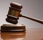 Court Imprisons A Labourer For Stealing Seedlings