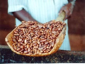 PBC manager, others arrested over missing cocoa